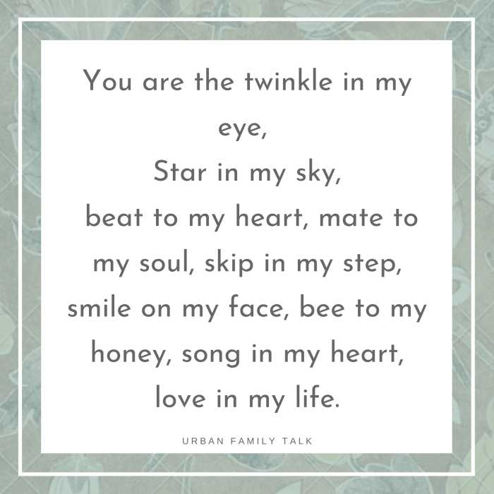 You are the twinkle in my eye, Star in my sky, beat to my heart, mate to my soul, skip in my step, smile on my face, bee to my honey, song in my heart, love in my life.