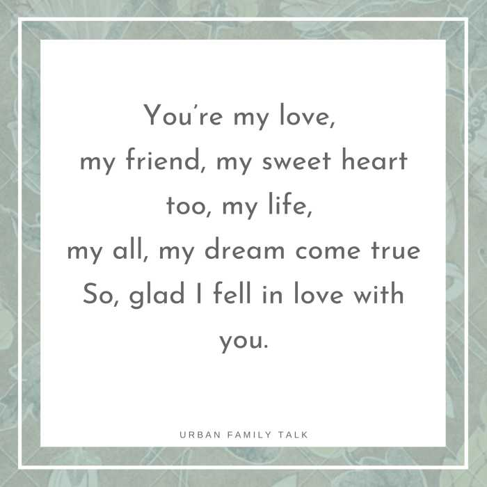 You're my love, my friend, my sweet heart too, my life, my all, my dream come true So, glad I fell in love with you.