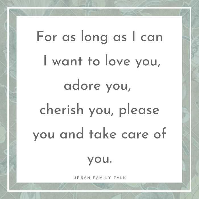 For as long as I can I want to love you, adore you, cherish you, please you and take care of you.