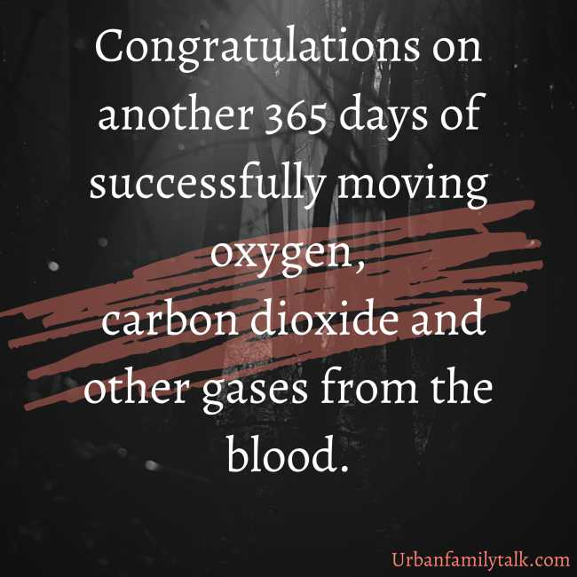 Congratulations on another 365 days of successfully moving oxygen, carbon dioxide and other gases from the blood