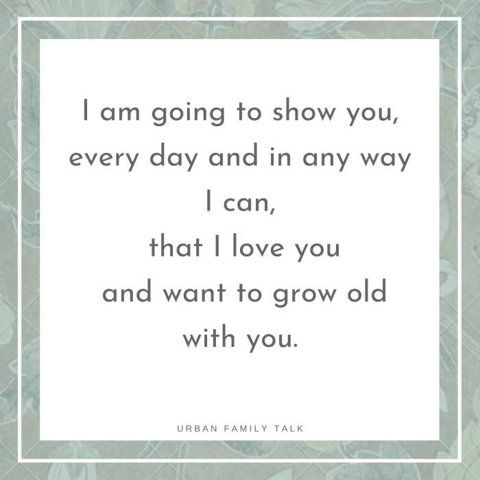 I am going to show you, every day and in any way I can, that I love you and want to grow old with you.