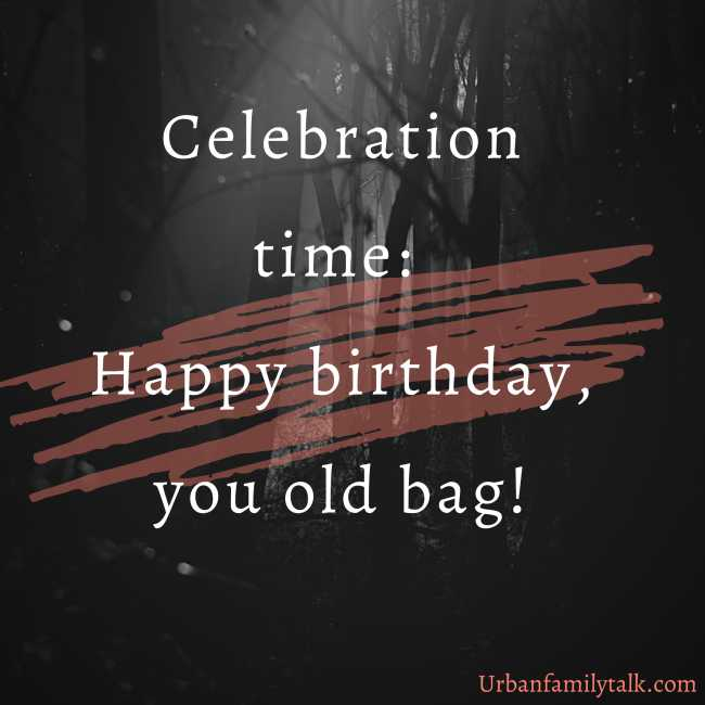 Celebration time: Happy birthday, you old bag!