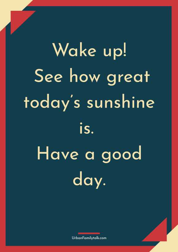 Wake up! See how great today's sunshine is. Have a good day.