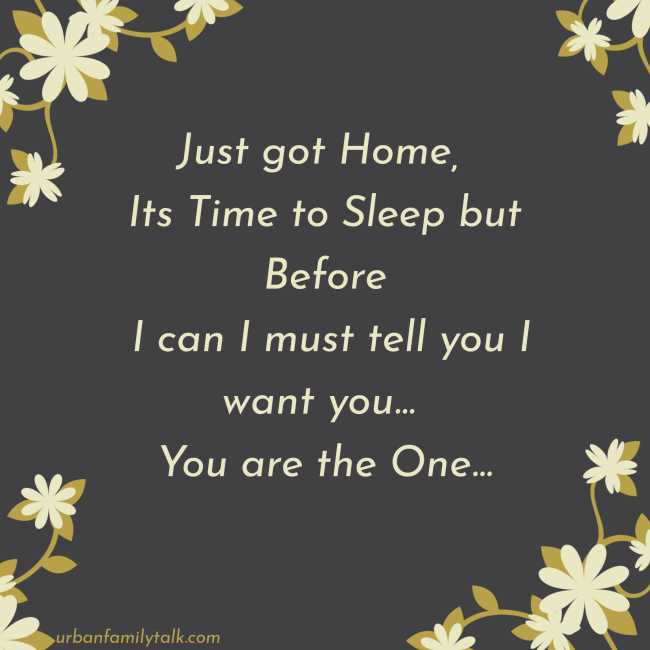Just got Home, Its Time to Sleep but Before I can I must tell you I want you... You are the One...