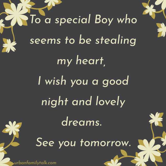 To a special Boy who seems to be stealing my heart, I wish you a good night and lovely dreams. See you tomorrow.