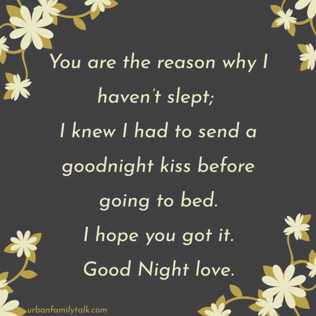You are the reason why I haven't slept; I knew I had to send a goodnight kiss before going to bed. I hope you got it. Good Night love.