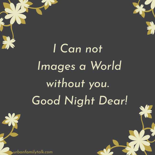 I Can not Images a World without you. Good Night Dear!