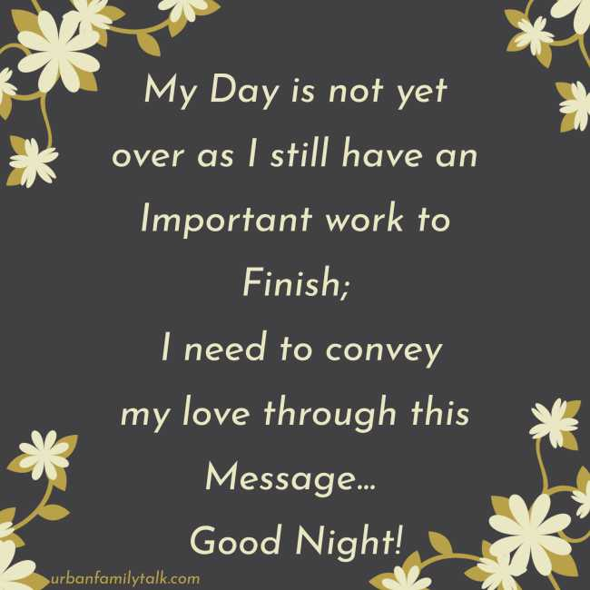 My Day is not yet over as I still have an Important work to Finish; I need to convey my love through this Message... Good Night!