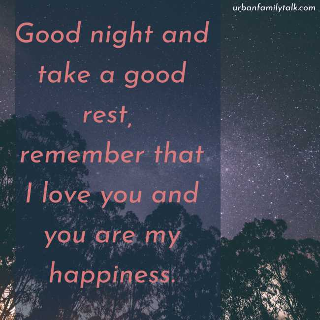Good night and take a good rest, remember that I love you and you are my happiness.