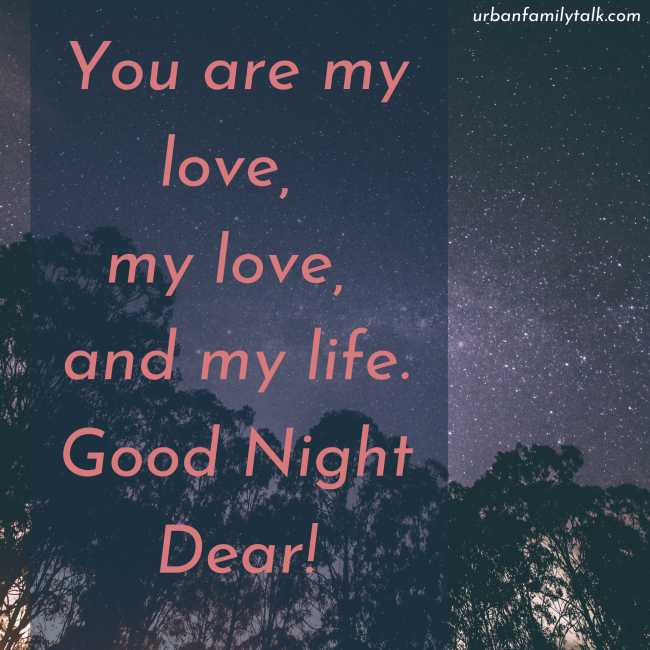 You are my love, my love, and my life. Good Night Dear!