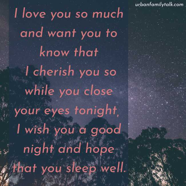 I love you so much and want you to know that I cherish you so while you close your eyes tonight, I wish you a good night and hope that you sleep well.