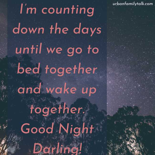 I'm counting down the days until we go to bed together and wake up together. Good Night Darling!