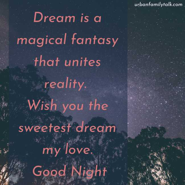 Dream is a magical fantasy that unites reality. Wish you the sweetest dream my love. Good Night