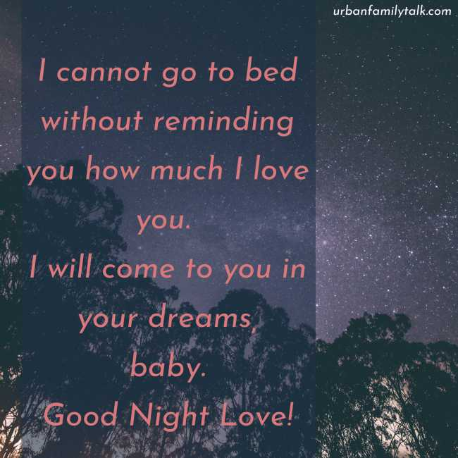 I cannot go to bed without reminding you how much I love you. I will come to you in your dreams, baby. Good Night Love!
