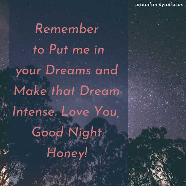 Remember to Put me in your Dreams and Make that Dream Intense. Love You, Good Night Honey!