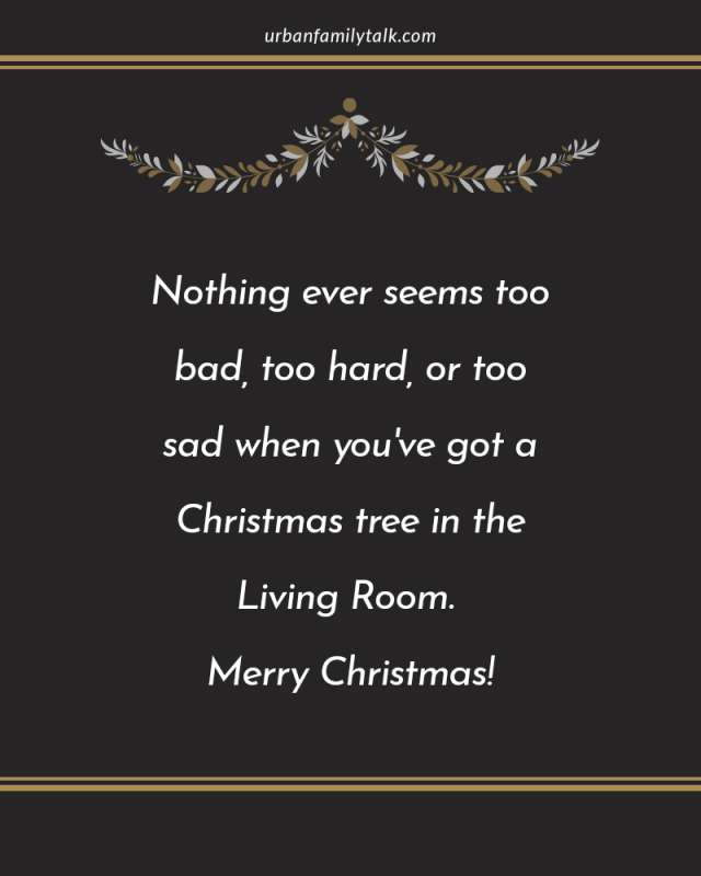 Nothing ever seems too bad, too hard, or too sad when you've got a Christmas tree in the Living Room. Merry Christmas!