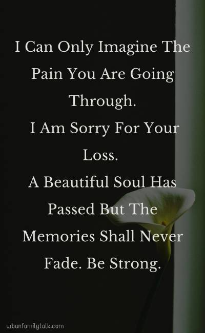 I Can Only Imagine The Pain You Are Going Through. I Am Sorry For Your Loss. A Beautiful Soul Has Passed But The Memories Shall Never Fade. Be Strong.