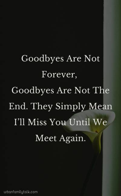 Goodbyes Are Not Forever, Goodbyes Are Not The End. They Simply Mean I'll Miss You Until We Meet Again.