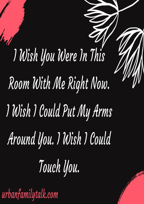 I Wish You Were In This Room With Me Right Now. I Wish I Could Put My Arms Around You. I Wish I Could Touch You.
